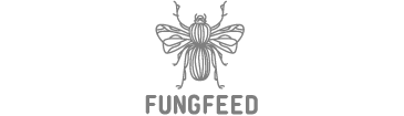 FungFeed_gris_Plan de travail 1